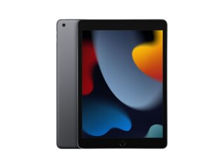 Apple iPad (2021) Wi-Fi 256GB -