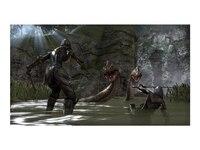 ZeniMax Germany GmbH The Elder Scrolls Online (PS4)