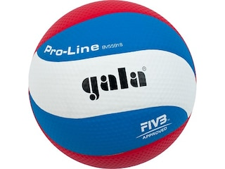 Gala Volleyball ??Pro-Line?? -