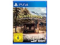 Headup Games Trüberbrook (PS4)