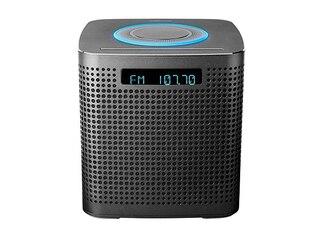 Medion MD 44300 LIFE® P64430 WLAN Mikro-Audio-System m. Alexa grau -