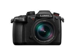 Panasonic Lumix DC-GH5 II + Leica DG Elmarit 12-60mm f/2,8-4,0 OIS -